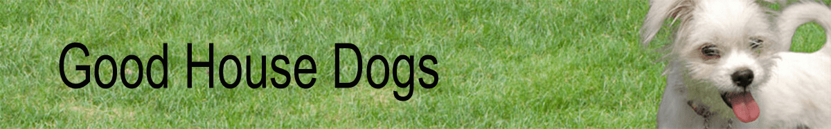 Good House Dogs